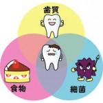 【えっ、そうなの?】最近の虫歯予防法。