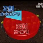 「働かない働きアリ:集団存続に必要」の研究報告⇒ネットでは日本の社会・職場の現状に対する非難へ!「俺が犠牲になって働かない」「1億総活躍しない」の意見も