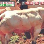 「アメリカ産牛肉」と「成長ホルモン」と「ホルモン依存性がん(乳がん・前立腺がん)」の危ない関係