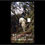 【沖縄・高江】「首も絞まっちゃうよ」警察官、笑いながらロープで市民拘束by沖縄タイムス