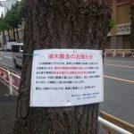 """【署名】""""たった""""二週間のオリンピックのために樹齢100年の街路樹300本を伐採!千代田区で街路樹保護のための署名"""