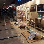 【涙腺崩壊】イスタンブールを大吹雪が襲った日、野良犬・野良猫のためにショッピングモールが開放される