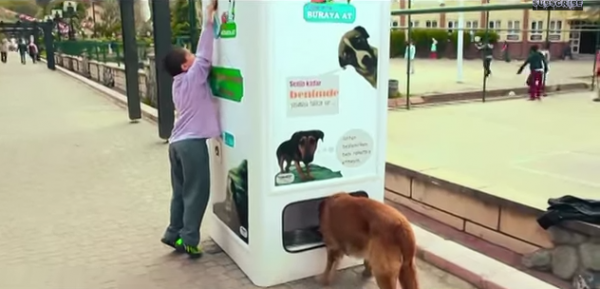 vending-machine-feeds-stray-animals-in-istanbul-04-600x289