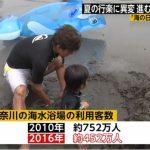 【驚愕】日本人(若者)の「海離れ」が深刻!神奈川県の海水浴場の利用客数は2010年752万人⇒2016年452万人に激減!